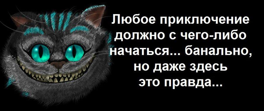 Алиса4.jpg