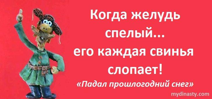 """Цитаты и афоризмы о свиньях и на """"свинскую"""" тематику"""