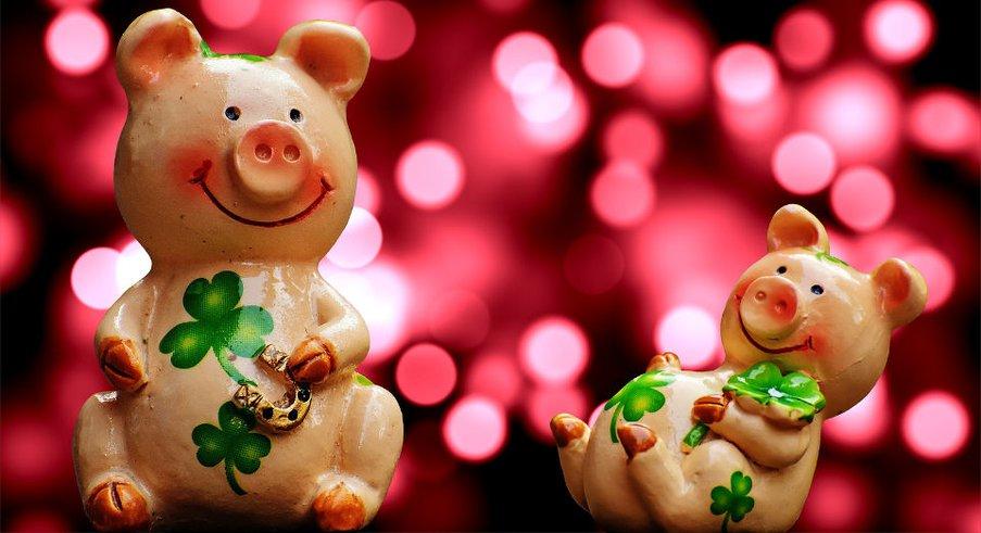 Как правильно встречать год Свиньи